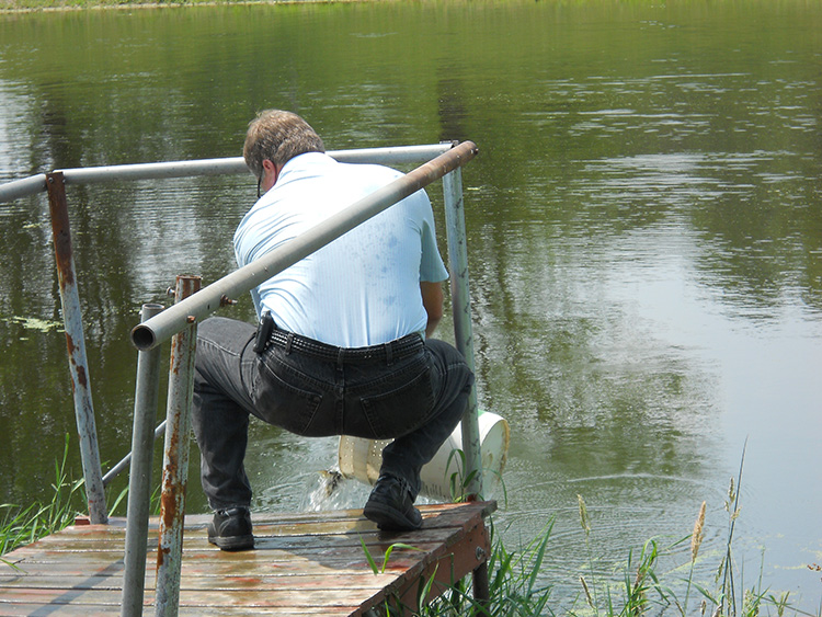 Stocking dorchester pond central wisconsin fur fin and for Stocked fishing ponds
